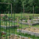 Lachat Town Farm